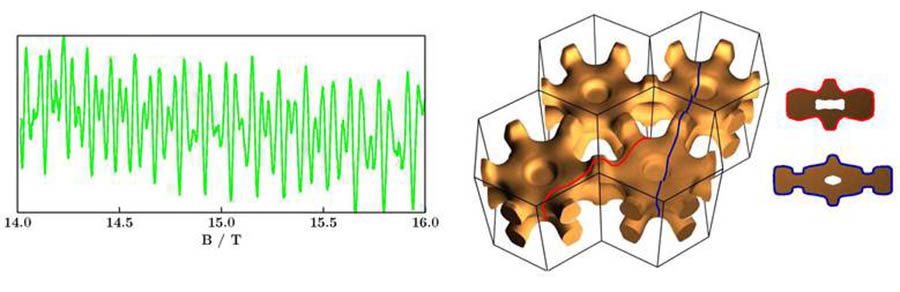 Quantum Oscillation Studies of strongly correlated electrons